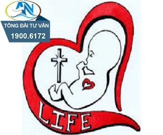Chế độ thai chết lưu